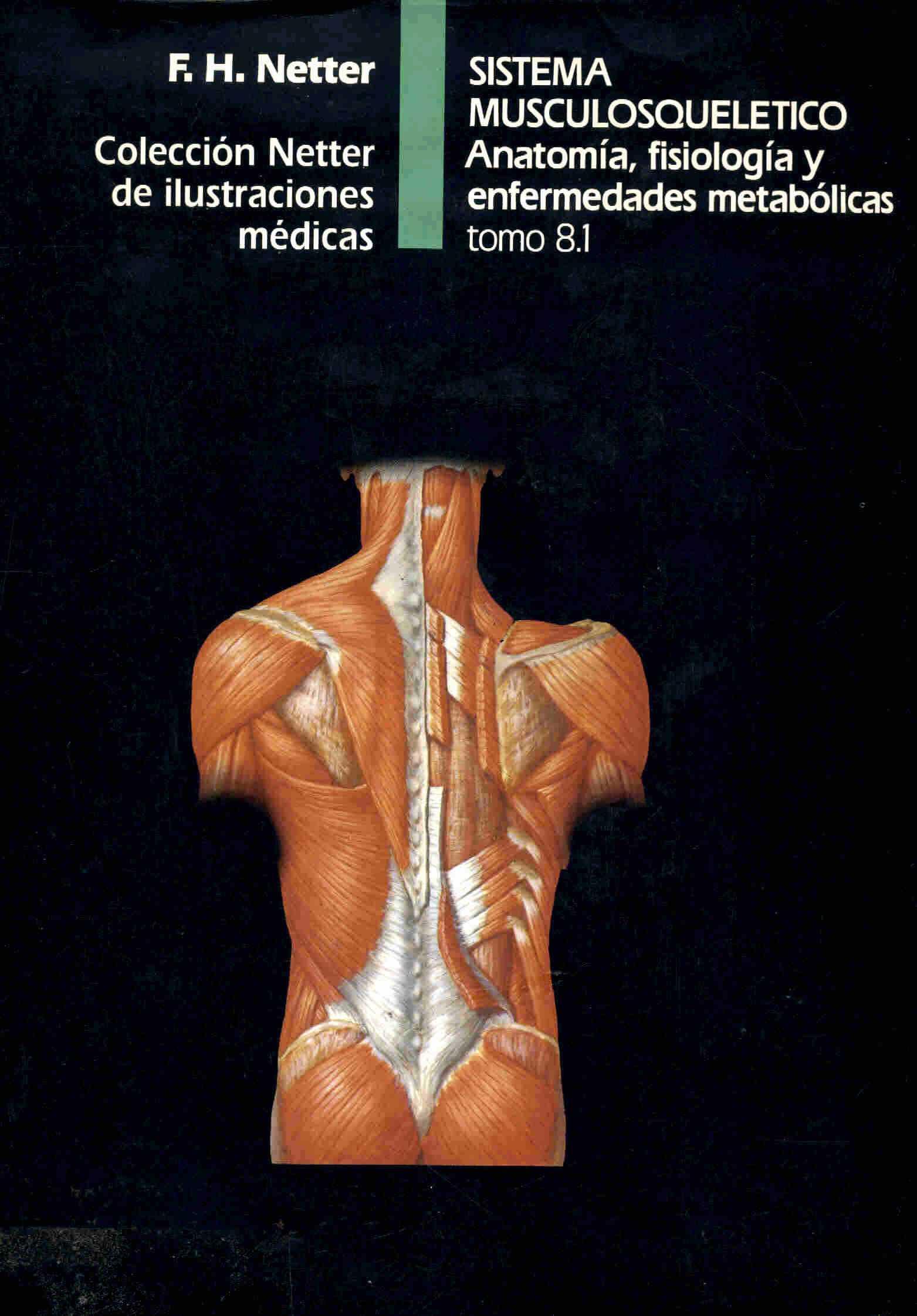 Único Anatomía Y Fisiología Capítulo 5 El Sistema Contesta ...